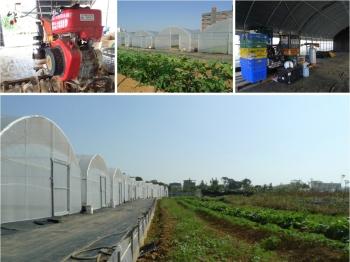 有機農場, 温室工程, 設計規劃